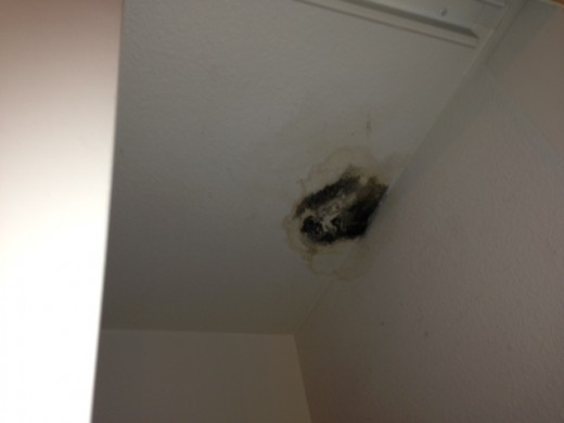 Water Damage Can Be Tricky, But No Match For SOS Plumbing Rooter!