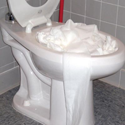clogged-toilet-tampa-1